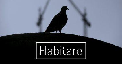 """Textos para la exposición """"Habitáre"""" (5-18 octubre en Bilbaoarte) exposición blackkamera bilbaoarte"""