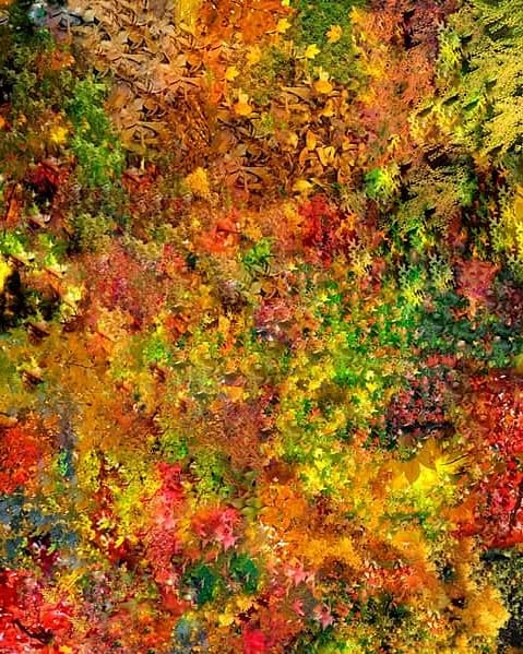 100 autumns