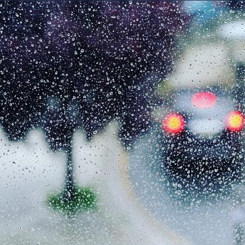 Life behind the raindrops